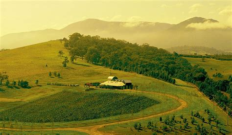 yarra valley yarra valley the australian traveller guide australian