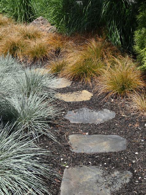 grass garden ideas garden ideas how to combine ornamental grasses tended