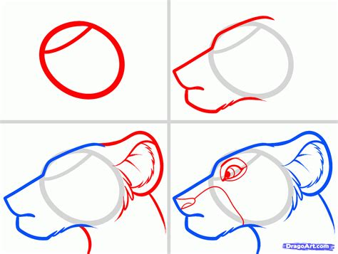 easy drawings how to draw nala easy step by step disney characters