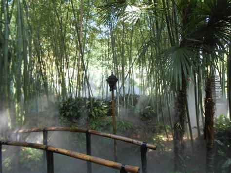 bamboo garden design ideas 70 bamboo garden design ideas how to create a