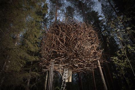 hotel tree treehotel se the bird s nest