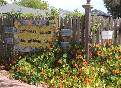 community vegetable garden fern avenue community gardens open day adelaide