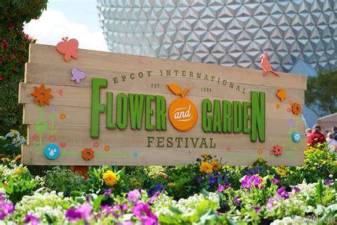 flower and garden festival 5 reasons why epcot s flower and garden festival is a must see