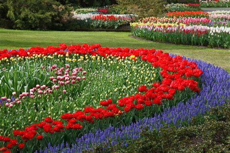 flower garden photos flower garden free stock photo domain pictures