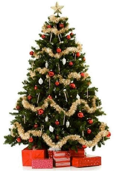 origen ancestral 193 rbol de navidad