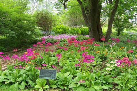 botanical gardens ma berkshire botanical garden stockbridge chamber of