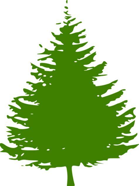 kiefer weihnachtsbaum kostenlose vektorgrafik kiefer baum weihnachtsbaum