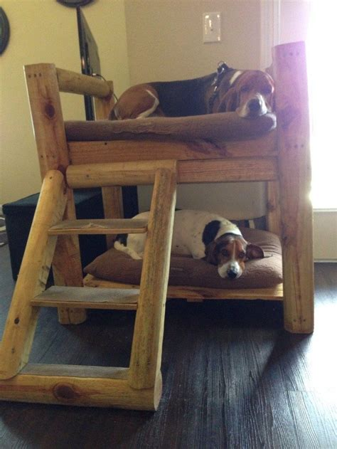 puppy bunk beds puppy bunk beds images