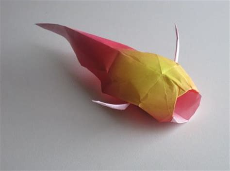 koi origami completed origami koi origami paper crafts