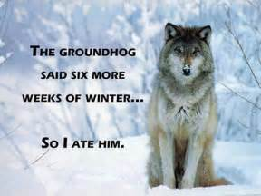 groundhog day keep the talent happy 1165 best lol tales images on