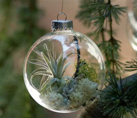 nature ornaments for tree wreaths and tree ornaments with plants