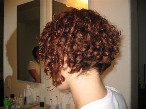bob hairstyles that can still go in a ponytail short inverted bob haircuts 2014 this is some variation