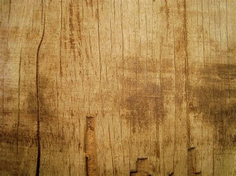 large wooden wood texture free large images