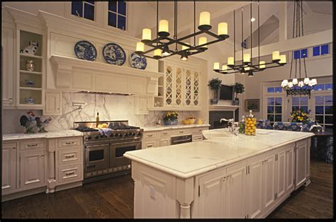 Home Decorative Plants large country kitchen traditional kitchen san diego
