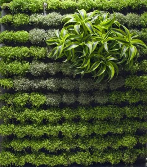 garden walls designs 8 living walls and vertical gardens to bring a touch of