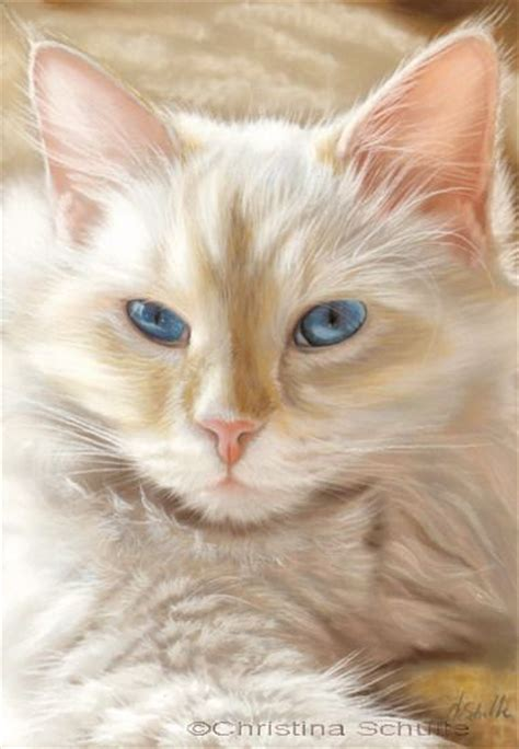 do cat painting 25 best pastel paintings ideas on