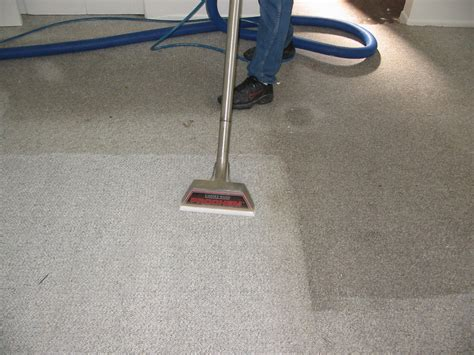 Carpet Ckeaner by Liability Insurance Liability Insurance Carpet Cleaners