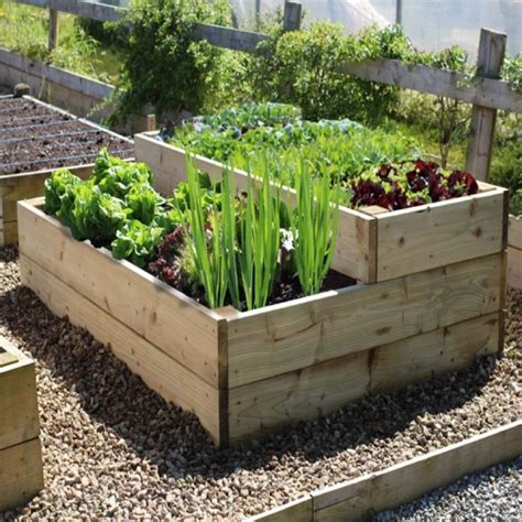 best vegetables for small garden 25 best ideas about small vegetable gardens on