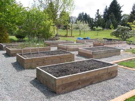 raised bed designs vegetable gardens the tacoma kitchen garden journal raised vegetable beds