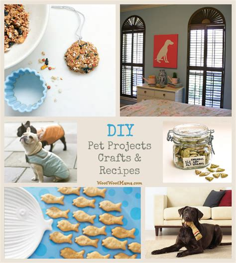 pet craft projects 7 diy pet projects crafts and recipes woof woof