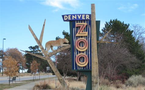 denver zoo lights coupons denver zoo coupons 2017 2018 best cars reviews