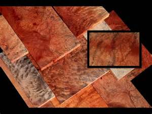 madrone woodwork wood madrone burl madrone is known as strawberry