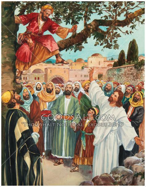 tree and jesus zacchaeus climbed up in a tree so hecould see jesus