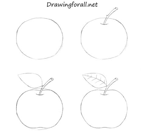 how to draw for beginners how to draw an apple for beginners by stevelegrand on