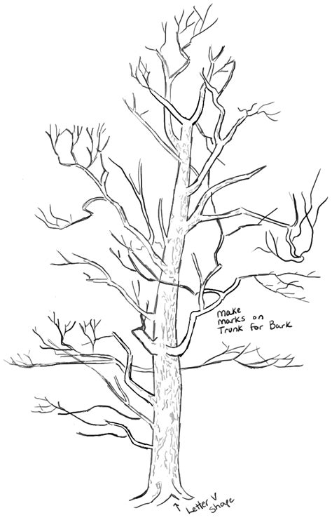 how to draw a realistic tree step by step how to draw trees drawing realistic trees in simple