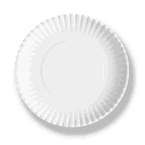 with paper plates 6 in paper plates 1000