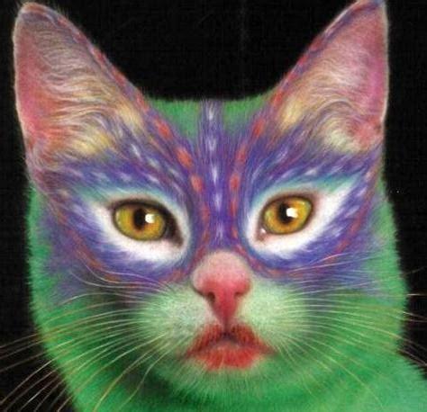 do cat painting fotos de gatos pintados