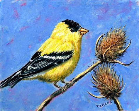 painting birds acrylic paintings and cat and other animals by dottie dracos