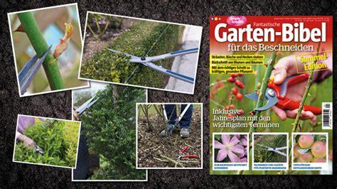 Garten In Der Bibel by Fantastische Garten Bibel 04 2016 Der Hit F 252 R Den