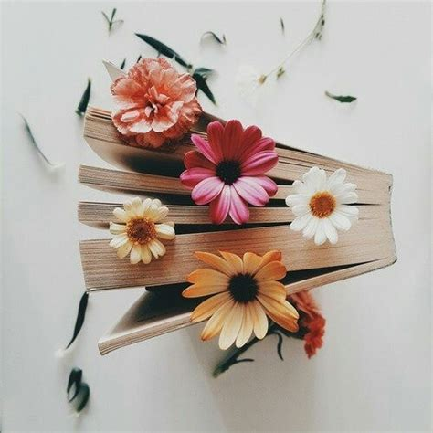 flower picture book flower books via on we it