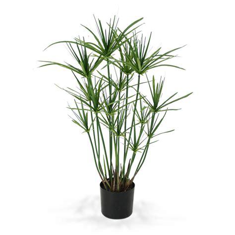 faux papyrus 65 cm plantes artificielles et arbres chez maxifleur