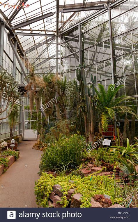 amsterdam botanical garden amsterdam hortus botanicus botanical garden inside