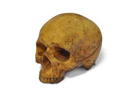 skull and crossbones rubber st prop hire 187 skulls bones skeletons 187 skull rubber