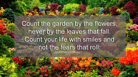 quotes on gardens and flowers garden quotes autumn image quotes at relatably
