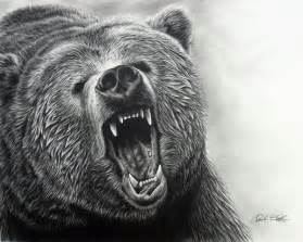 Home Decor Inspiration 10 bear drawings showcase hative