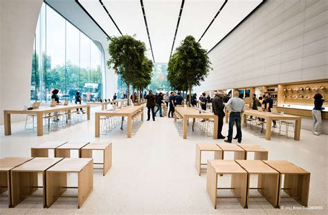 tree shop store jony ive s vision for new apple stores live trees cult