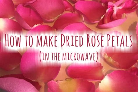 how to make from petals how to petals and how not to them the
