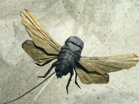 origami bugs realistic insects in paper brian chan