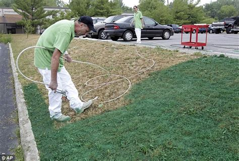 spray painting grass green drought sufferers spray dead and dried lawns green using