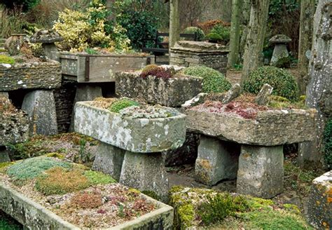 rock gardens images how to create a rock garden mnn nature network