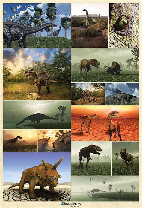 dinosaurs murals walls dinosaur wall mural wall murals