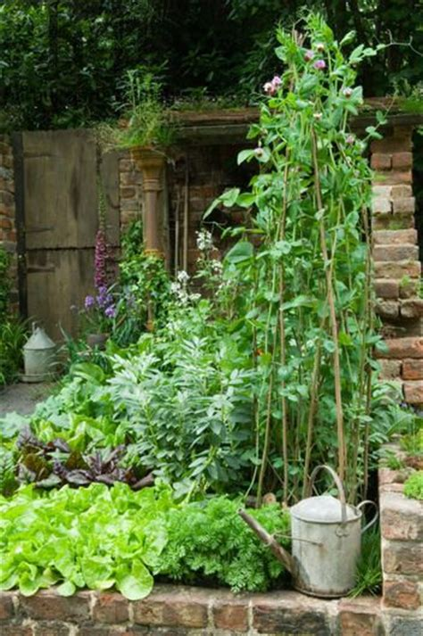 kitchen vegetable garden 671 best beautiful vegetable gardens images on