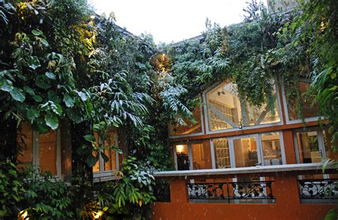 home vertical garden blanc s house vertical garden blanc