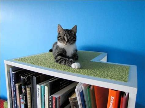 cat ideas 33 modern cat and beds creative pet furniture design