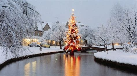 bourton on the water lights 101 reasons to the cotswolds bourton tree