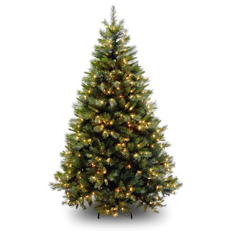 www christmastrees tree catalogues